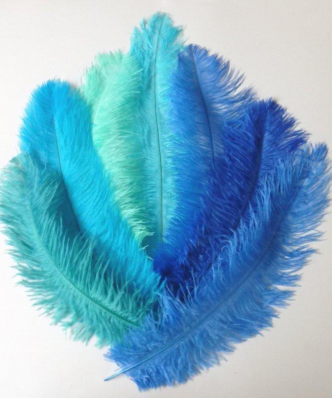 Plume-Autruche-Bleue-30-40cm