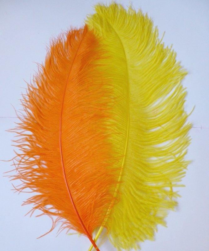 Plume-Autruche-Jaune-Orange-50-60cm