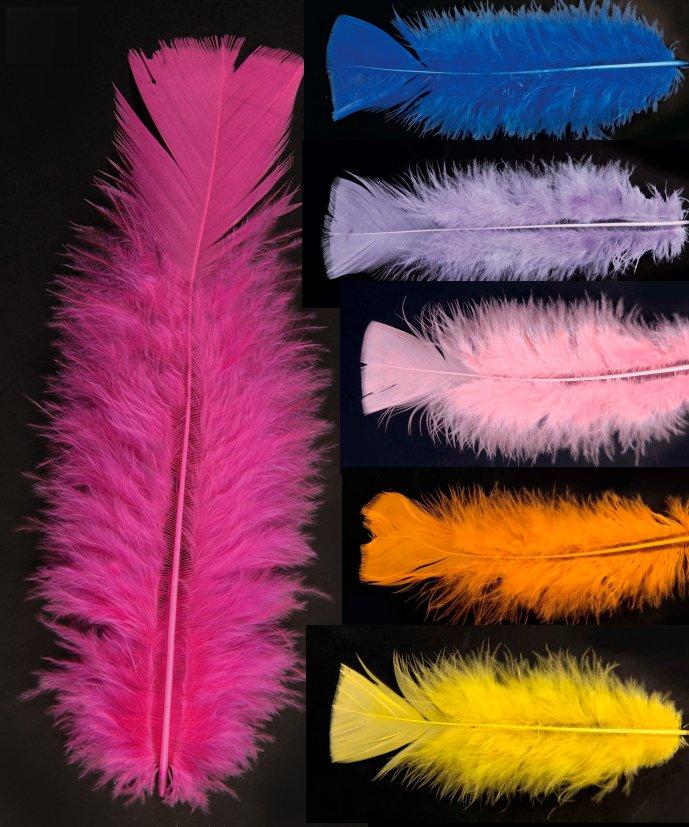 Plumes-décoratives-Lot-de-50-plumes-10cm