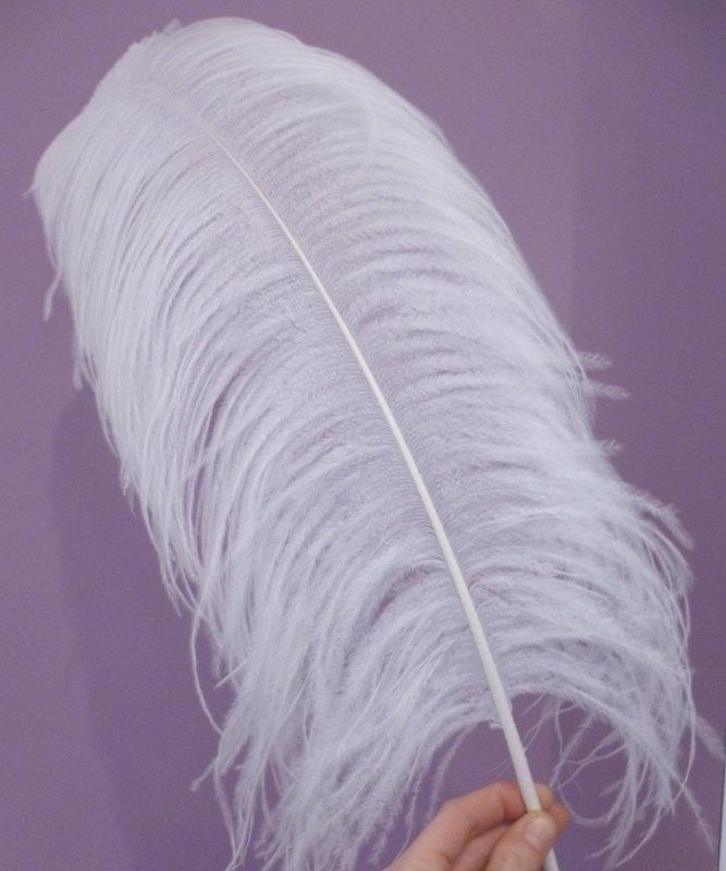 Plume-Autruche-Blanche-LUXE-50-60cm