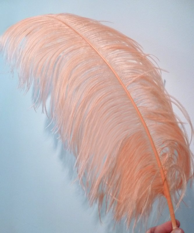 Plume-Autruche-Saumon-50-60cm