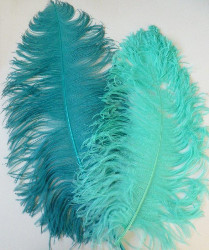 Plume-Autruche-Bleue-50-60cm