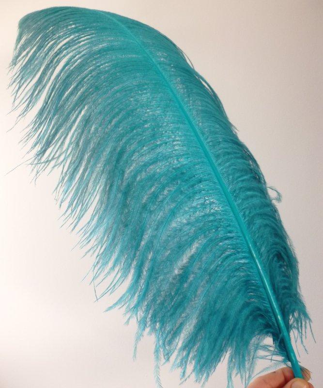 Plume-Autruche-Bleue-Petrole-LUXE-50-60cm