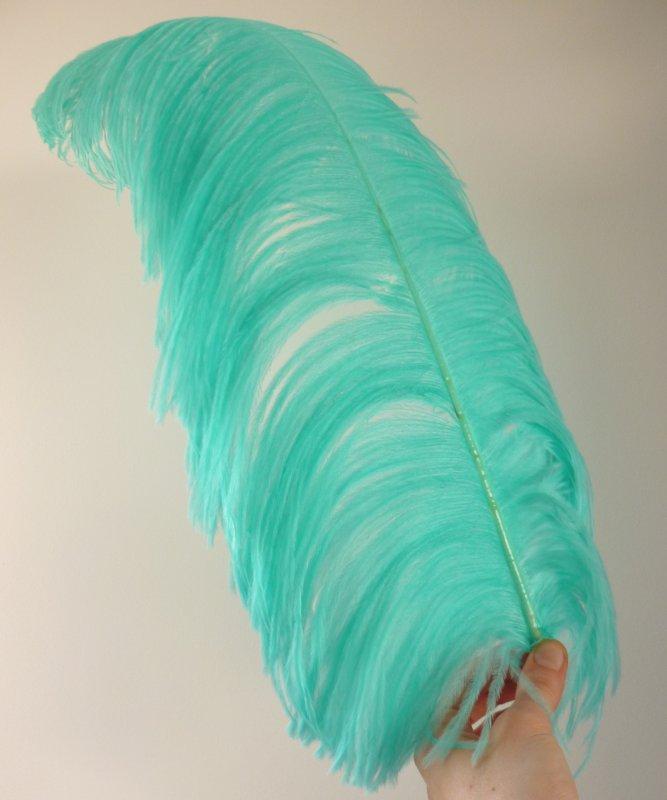 Plume-Autruche-Bleue-Menthe-LUXE-50-60cm