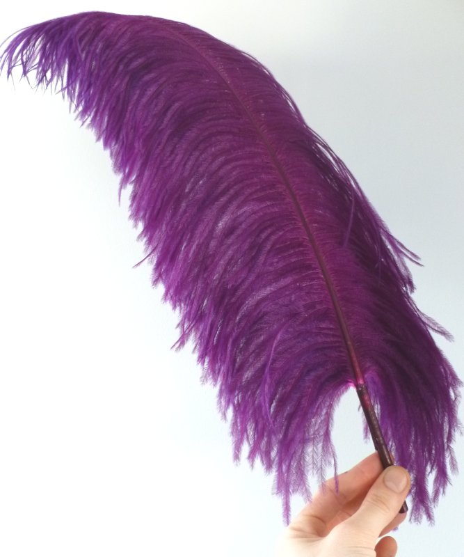 Plume-Autruche-Violet-Cardinal-LUXE-50-60cm