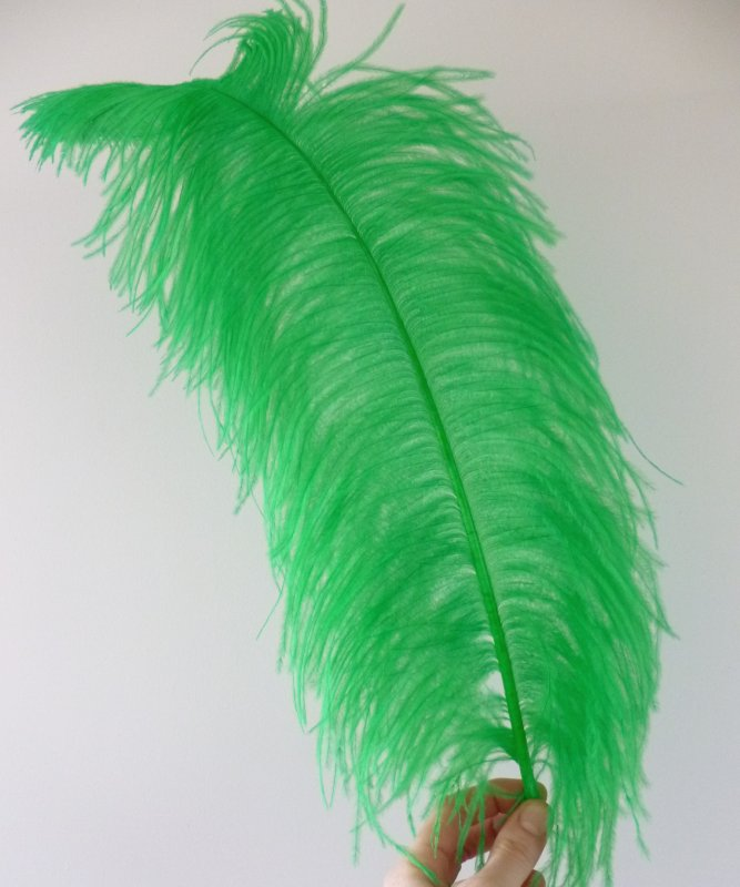 Plume-Autruche-Vert-tendre-LUXE-50-60cm