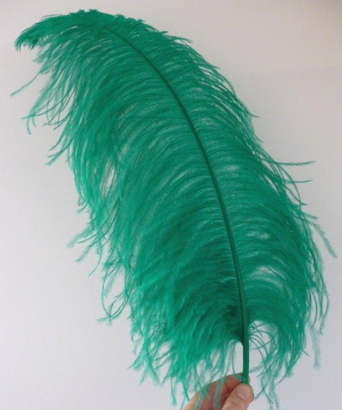 Plume-Autruche-Vert-Emeraude-LUXE-50-60cm