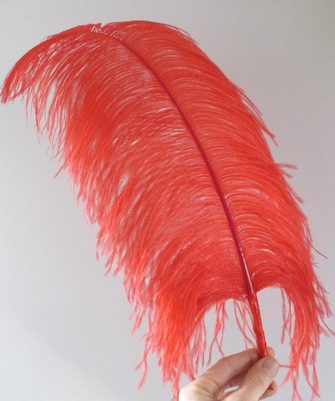 Plume-Autruche-Rouge-LUXE-50-60cm
