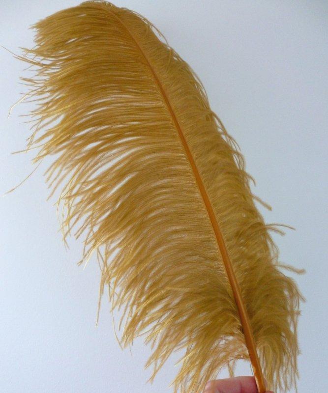 Plume-Autruche-Cognac-LUXE-50-60cm
