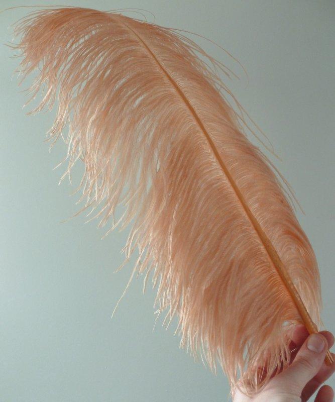 Plume-Autruche-Vieux-rose-LUXE-50-60cm