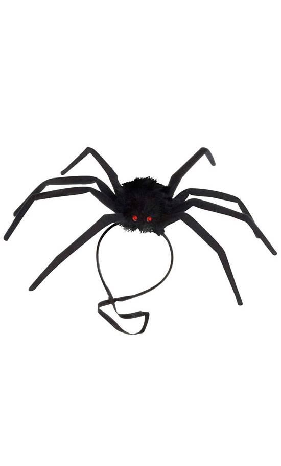 Araignée-modelable-2