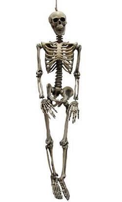 Squelette-90cm