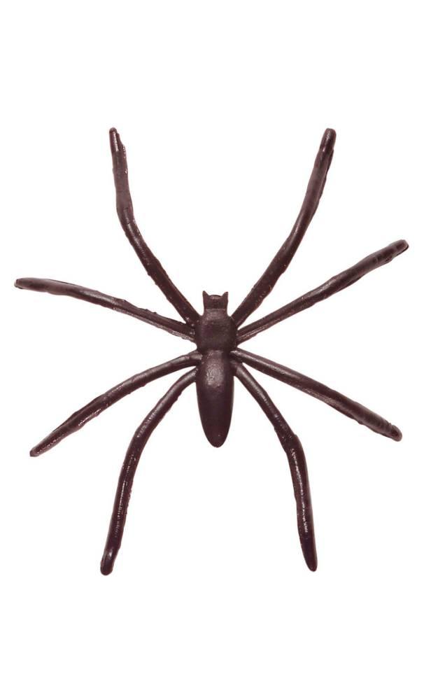 Fausses-araignées