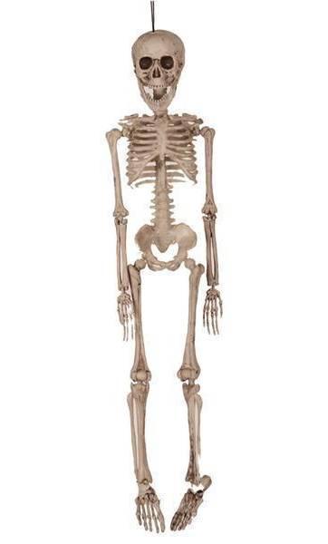 Faux-squelette-50cm-pour-décoration