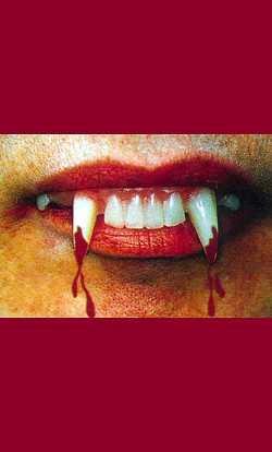 Dentier-vampire-2