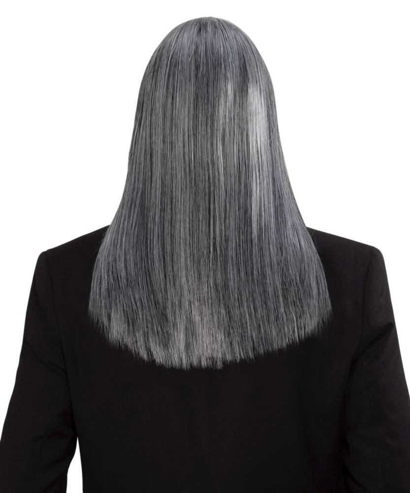 perruque homme cheveux longs gris p20355. Black Bedroom Furniture Sets. Home Design Ideas