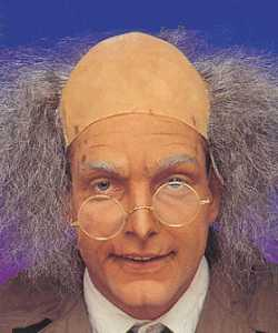 Perruque-Professeur-gris