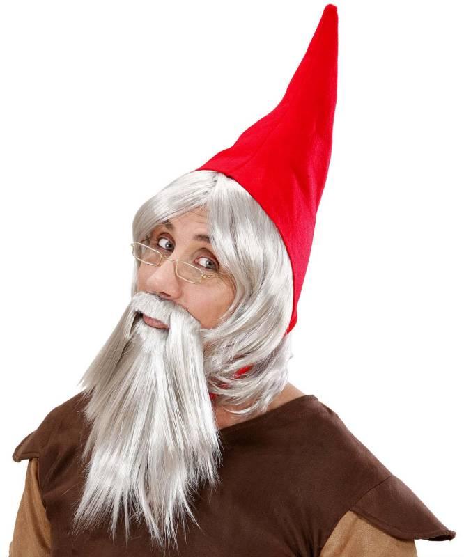 Perruque-et-barbe-de-gnome