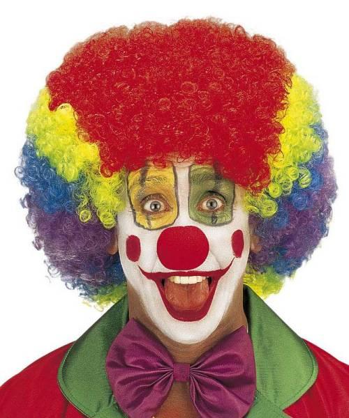 Perruque-Clown-Jimmy-multicolore