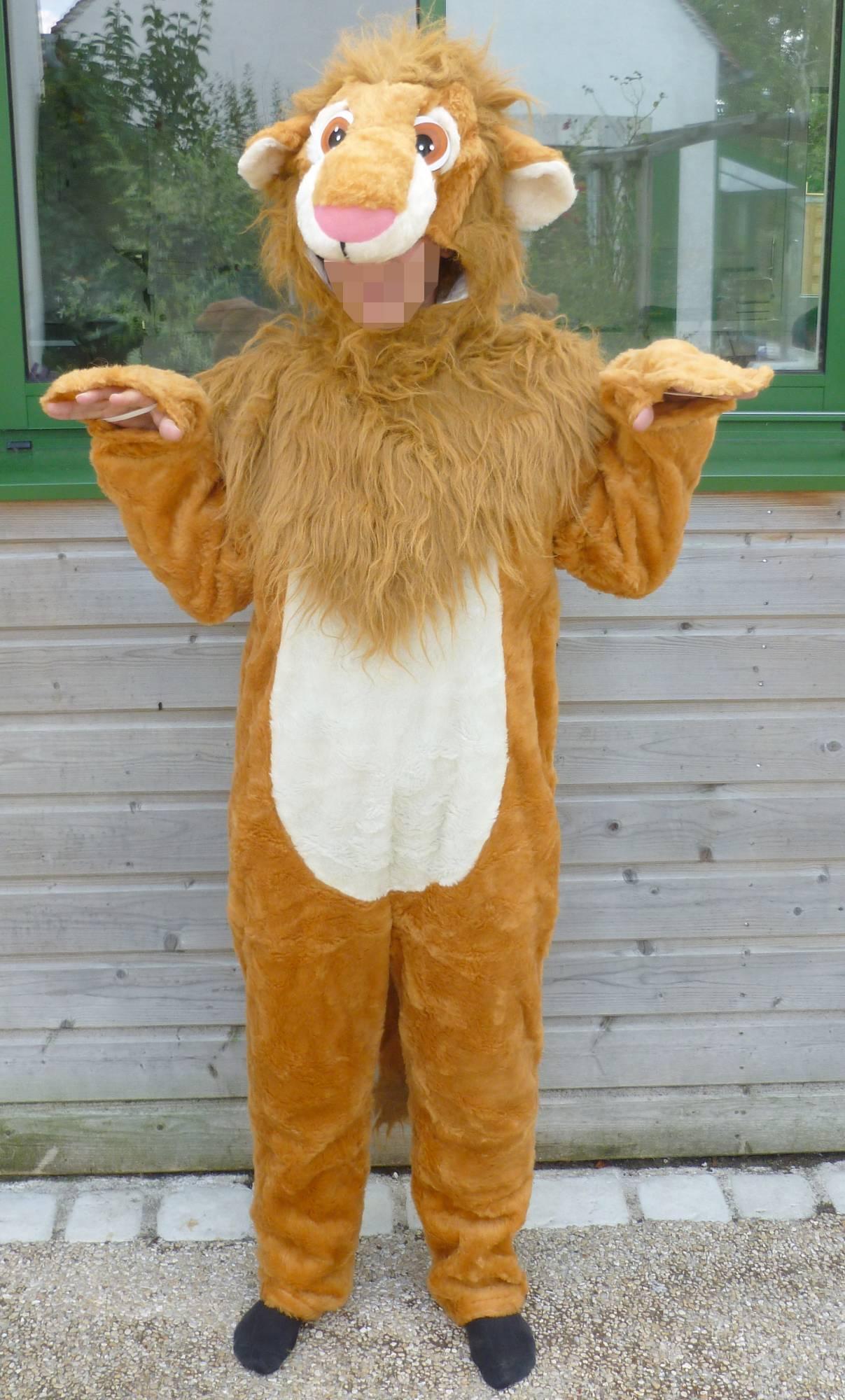 Costume-Lion-M1
