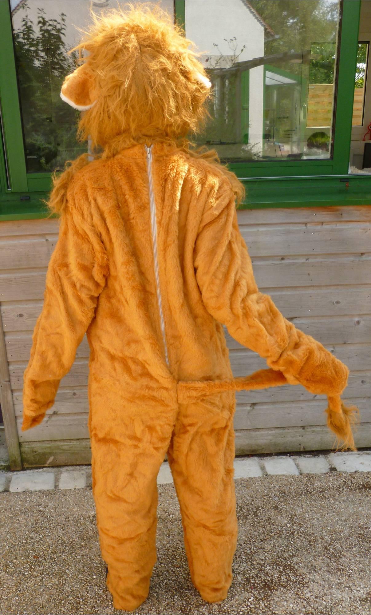 Costume-Lion-M1-2
