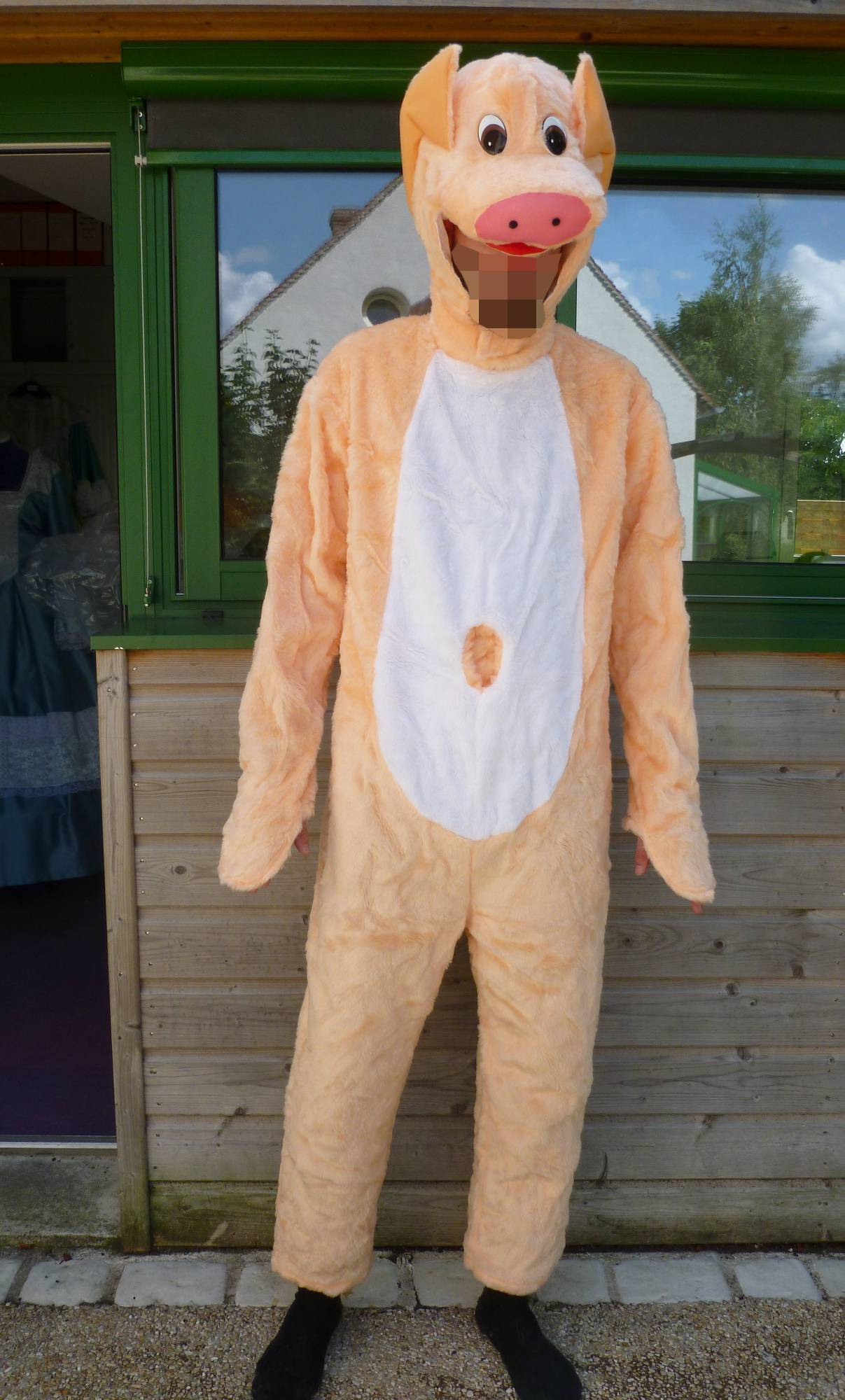 Costume-de-cochon