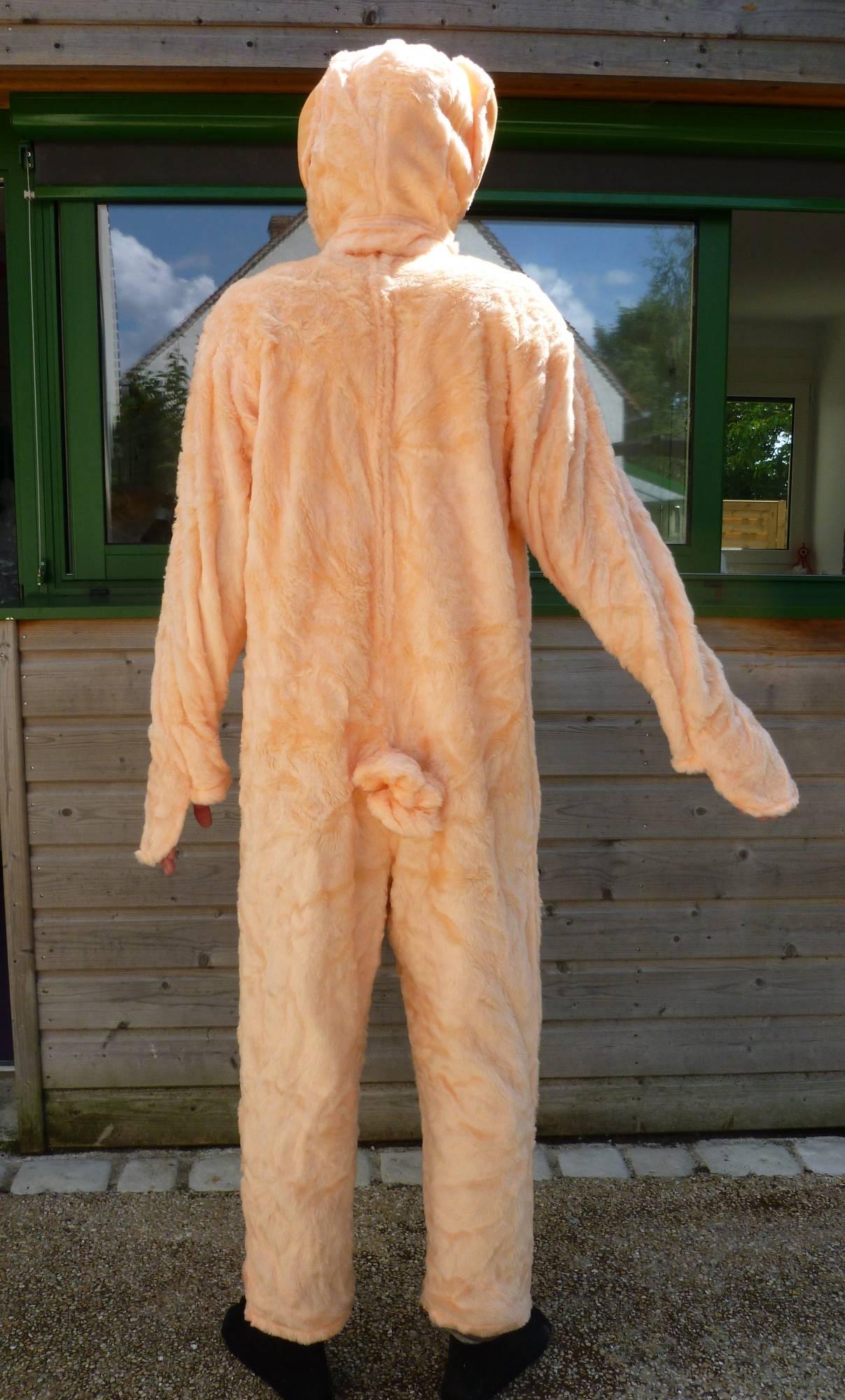 Costume-de-cochon-2