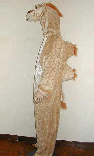 Costume-Chameau-M1