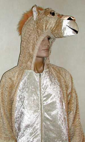 Costume-Chameau-M1-2