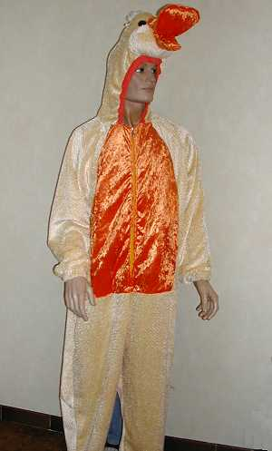 Costume-Canard-M2