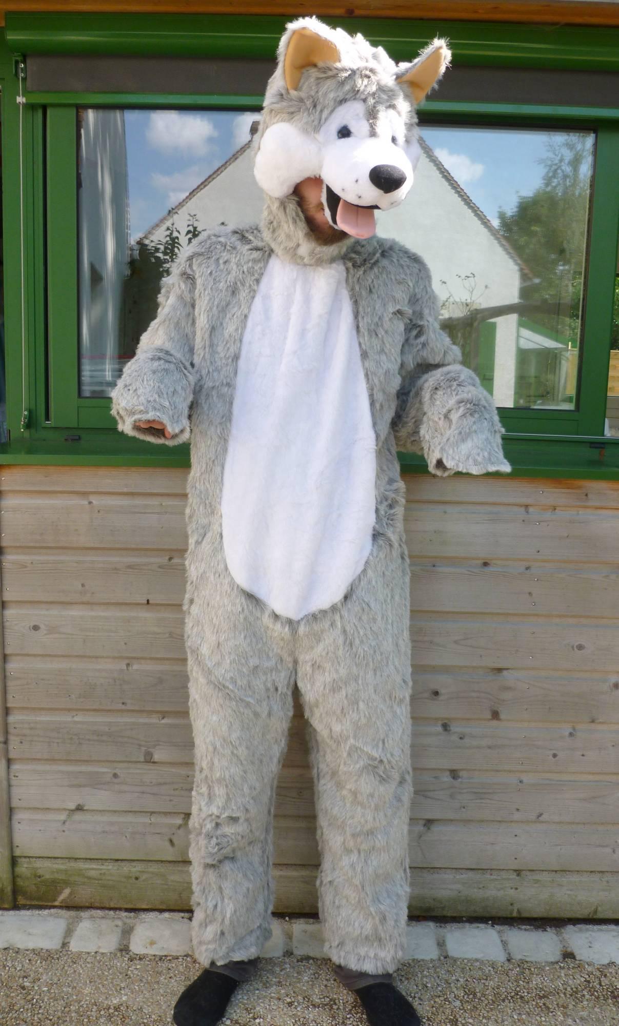 Costume-Chien-Husky-2