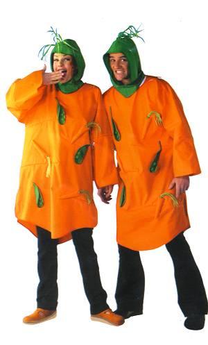 Costume-Carotte