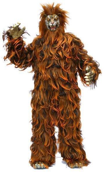 Costume-Tigre-M4