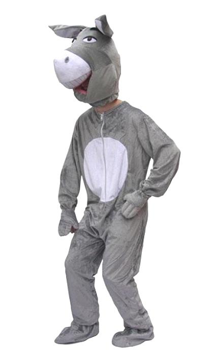 Costume-âne