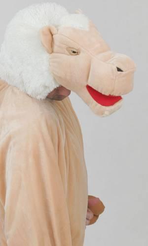 Costume-de-chameau-2