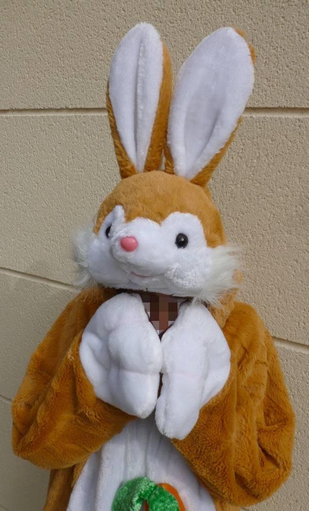 Costume-de-lapin-brun-roux-5