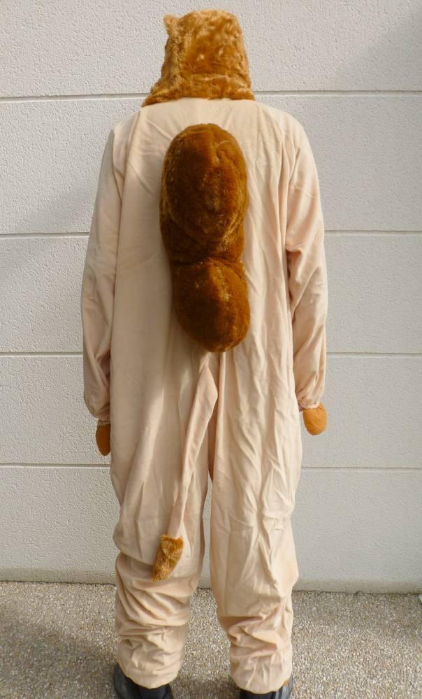 Costume-de-chameau-3