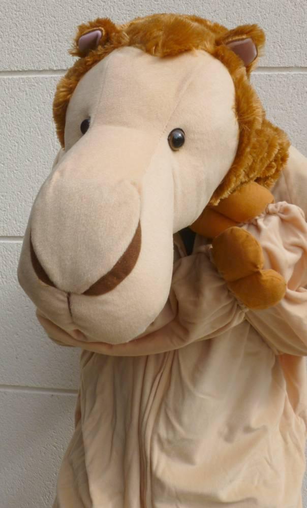 Costume-de-chameau-4
