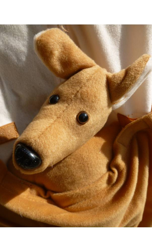 Costume-de-kangourou-5