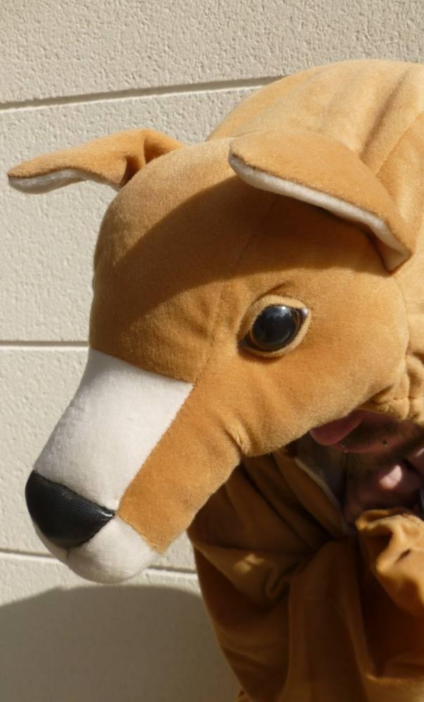 Costume-de-kangourou-6
