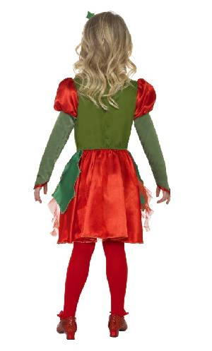 Costume-Princesse-Lutin-3