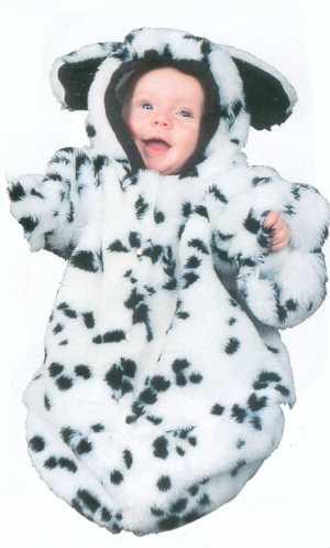 Costume-BB-Dalmatien
