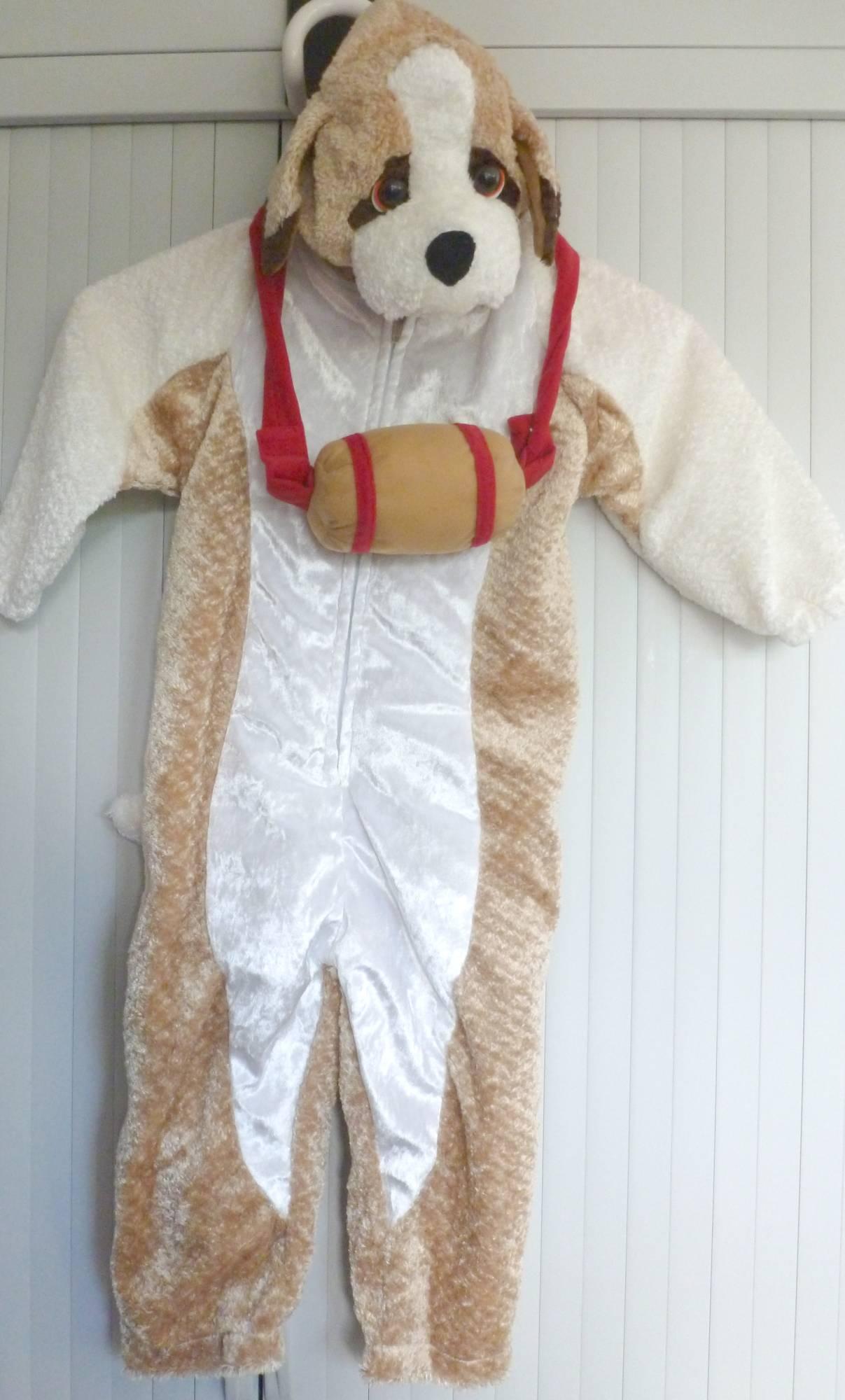 Costume-Chien-Saint-Bernard