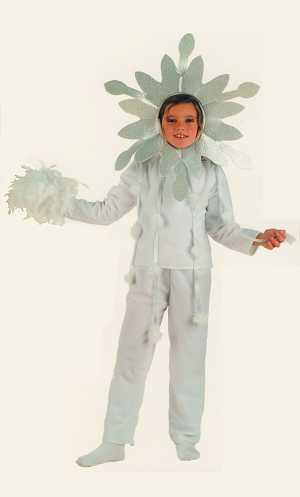 Costume-Flocon